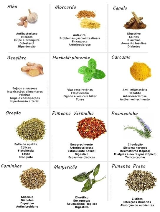 bajar-barriga-ayuda-las-plantas-naturales-medicinales