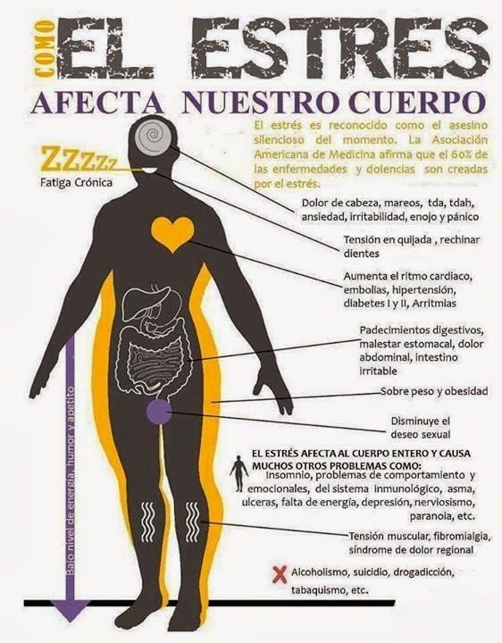 la-preocupacion-afecta-nuestro-sistema-digestivo-estres