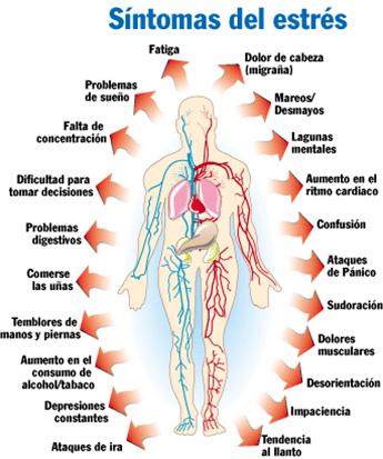 la-preocupacion-afecta-nuestro-sistema-digestivo-sintoma