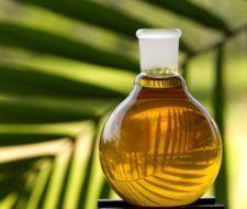 Productos y alimentos que llevan aceite de palma