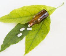 Alternativas naturales al paracetamol e ibuprofeno