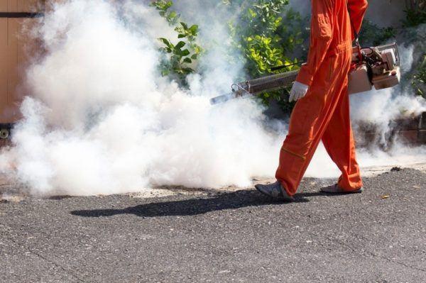 Alergia mosquitos fumigar