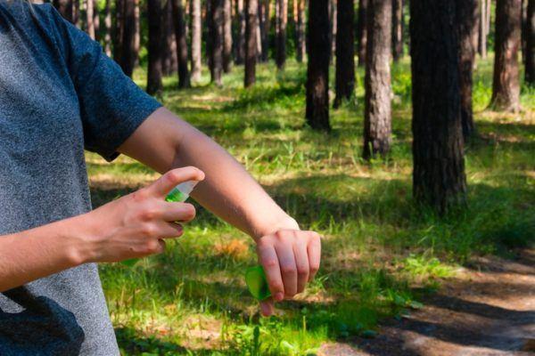 Consejos para evitar a los mosquitos campo
