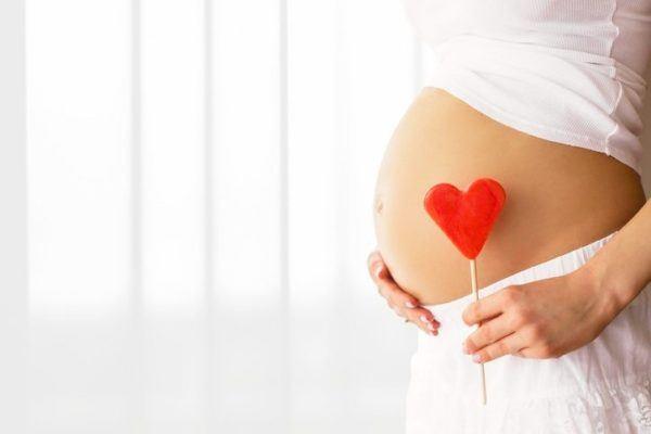 Hibisco contraindicaciones para embarazadas