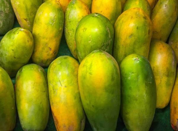 Papaya como elegir