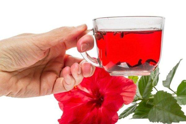 Propiedades y beneficios del hibisco poderes digestivos