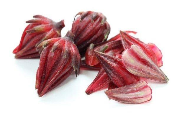 Que es el hibisco petalos rojos