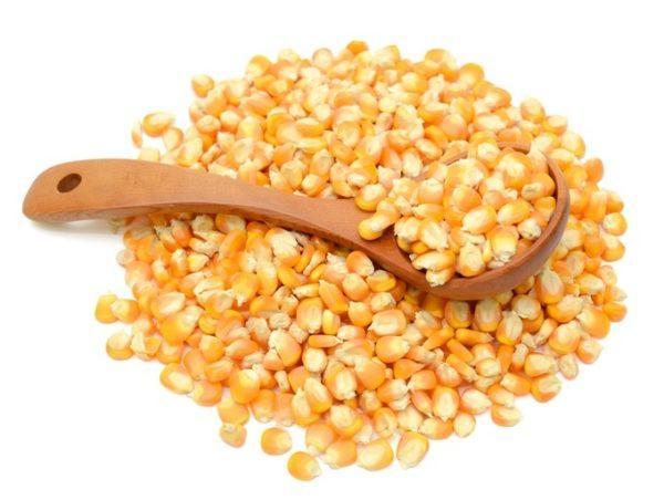 Que es la polenta maiz
