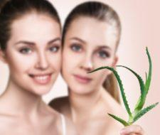 Mascarillas de aloe vera: Beneficios y propiedades para el pelo y la cara