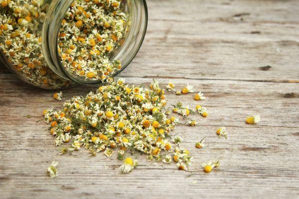 Remedios caseros y naturales para la hernia de hiato manzanilla
