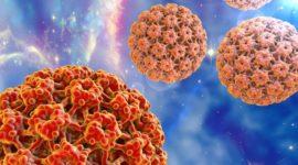 Virus del papiloma humano VPH – Qué es, síntomas, pruebas y tratamiento del VPH