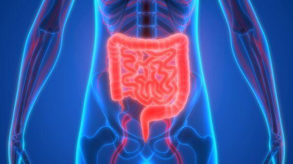 que-es-la-enfermedad-de-crohn