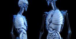 Remedios caseros y naturales para la hernia de hiato