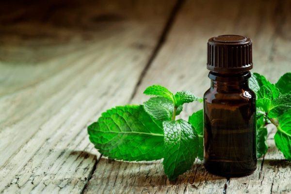 Remedios caseros para curar la gingivitis menta