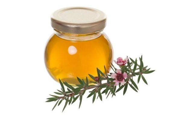 Remedios caseros para evitar los melanomas aceite de arbol de te