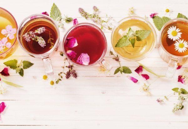 Remedios naturales para el ictus cerebral el te poder antioxidante