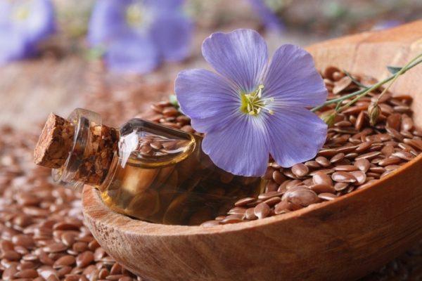 Semillas de lino precio