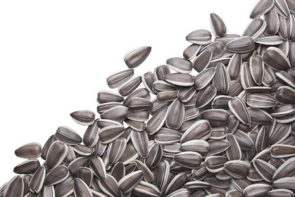 Semillas girasol celulitis
