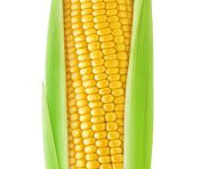 20 beneficios del maíz para la salud