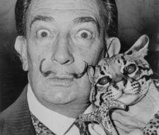 El método de Dalí nos explica cómo dormir bien en tan sólo dos horas