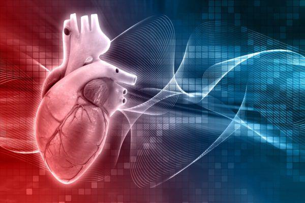 Nos ayuda a proteger nuestro corazon