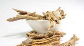 ¿Qué es y cómo se usa la Cassia Angustifolia? Propiedades, Beneficios y Efectos secundarios