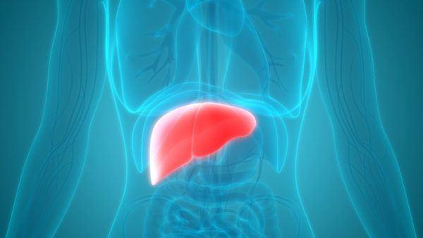 Qué es el hígado agrandado