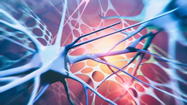 Que es esclerosis causas sintomas y tratamientos